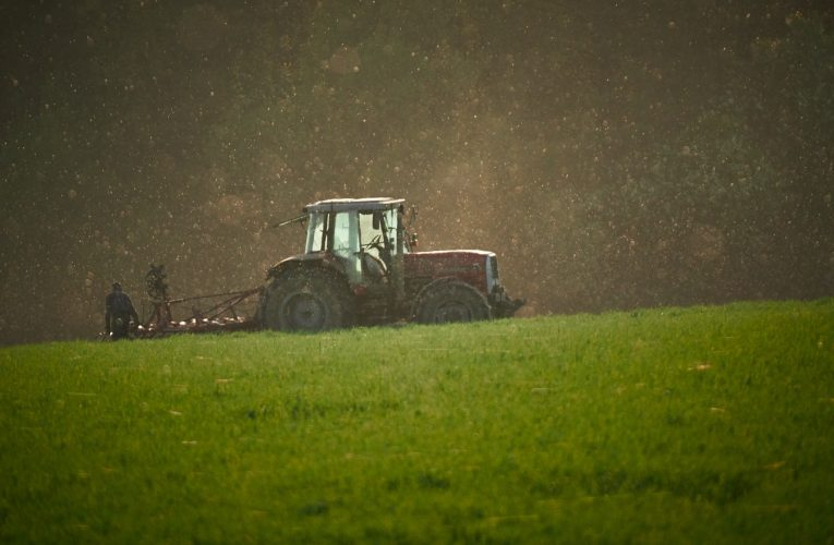 Rolnik – jak wygląda jego praca?